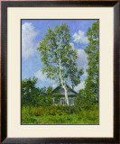 Birch Tree Near Dwelling Prints by Ilya Yatsenko