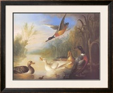 Waterfowl in a Landscape Prints by Marmaduke Cradock