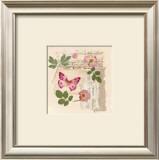 Butterfly Gardens Prints by Gillian Fullard