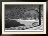 Heritage Pond in Winter Poster by Monte Nagler