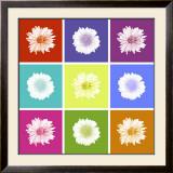 Vivid Bouquet Prints by Jason Johnson