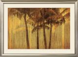 Sunset Palms III Art by  Amori
