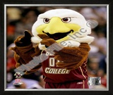 The Boston College Eagles Mascot Framed Photographic Print
