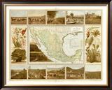 Carta Agricola, c.1885 Framed Giclee Print by Antonio Garcia Cubas