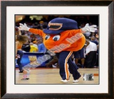 Otto Framed Photographic Print