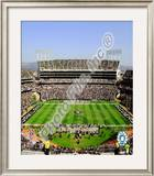 McAfee Coliseum Framed Photographic Print