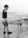 A Boy Throws Stones into the Sea for His Dog to Retrieve: the Dog Looks Up Expectantly Photographic Print by Henry Grant