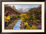 Brilliant View I Prints by Colby Chester