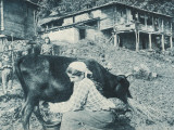 Trabzon, Turkey - Country Life Photographic Print