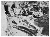 Two Paleontologists Unearth a Dinosaur in Canada Photographic Print