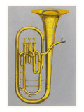 Tuba Colour Illustration Giclee Print