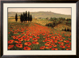 Hills of Tuscany I Art by Steve Wynne