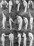 The Australian Cricket Team in England, 1912 Photographic Print