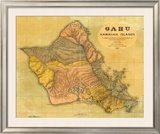 Oahu, Hawaiian Islands, c.1899 Framed Giclee Print by T. D. Beasley