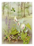 Woodland Scene with Green Woodpecker Giclee Print by Malcolm Greensmith