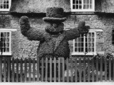 Topiary in Pub Garden 1930s Photographic Print
