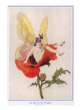 Woman Butterfly Being Harassed by a Wasp Giclee Print