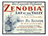 Zenobia Perfumes Giclee Print