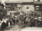 The Departure of a Herd of Goats from the Village of Salvan, Switzerland Photographic Print