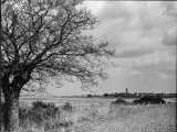 A Suffolk (England) Landscape, Near Blythburgh, with its Church Tower in the Distance Photographic Print