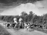 Two Kennel Workers Exercising Foxhounds on an English Country Lane Photographic Print