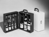 A Handy Case Containing Whisky, Martini and Gin, Mixers, a Bottle Opener and Glasses! Photographic Print