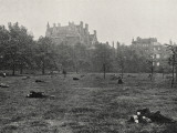 Vagrants Asleep in Green Park, Central London Photographic Print by Peter Higginbotham