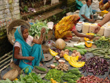 Street Market at Matiari, West Bengal, India Photographic Print