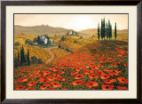 Hills of Tuscany II Poster by Steve Wynne
