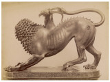 The Chimera Has - a Lion's Head - a Goat's Body - a Dragon's Tail Photographic Print