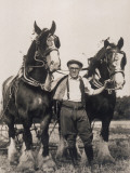 Working Shire Horses with their Owner on a Farm Photographic Print