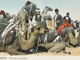 Camels from a Camel Train and their Camel Drivers at Izmir (Smyrna), Turkey Photographic Print