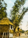 Philippines - Manila - Traditional Bamboo Stilt Houses Photographic Print