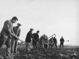 Refugees Working in the Fields Near Kitchener Camp During World War Ii Photographic Print by Robert Hunt