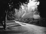 Idyllic Thatched Cottage Photographic Print