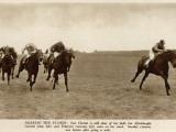Horses at Newmarket Photographic Print