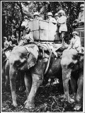 Edward VIII as Prince of Wales, Travelling by Elephant in Nepal Photographic Print