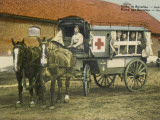 Horse Ambulance at Beverloo Training Camp, Belgium Photographic Print