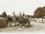 Russian Troika Racing Photographic Print