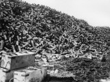 Shell Cases 1916 Photographic Print by Robert Hunt