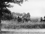 Royal Horse Artillery 1918 Photographic Print by Robert Hunt