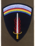 Badge of the Supreme Headquarters Allied Expeditionary Force Photographic Print by Malcolm Greensmith