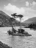 Island on Loch Eilt Photographic Print