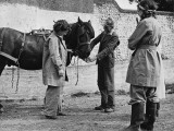 Land Girls Learning to Work with Horses on a Farm During World War II Photographic Print by Robert Hunt