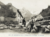 Sheep in the Street/Village at Gavarnie, France Photographic Print