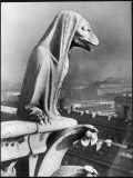 A Gargoyle Looks Down over Paris from Notre Dame Cathedral Photographic Print