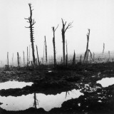 3rd Battle of Ypres Photographic Print by Robert Hunt