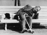 Sleeping Man and Pet Dog on Bench - South of France 1977 Photographic Print by Shirley Baker