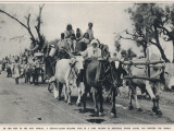 Refugees Leave East Punjab to Head to India Photographic Print