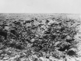 Shell Crater at the Chemin Des Dames on the Western Front During World War I Photographic Print by Robert Hunt